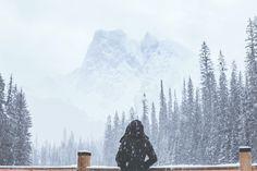 In my snowy, coolish, woody, dicembery, world ツ Adventure Awaits, Adventure Travel, Winter Is Coming, Adventure Is Out There, Winter Time, Winter Christmas, The Great Outdoors, Winter Wonderland, Alaska