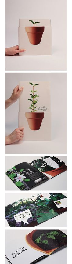 | good theme, simple, easy to point to |  Jenna Russell / Annual Report concept - The Plant Whisperers Society