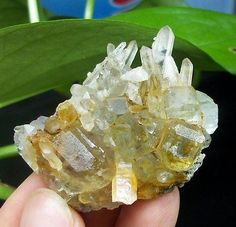 47mm-42g-clear-cubic-Fluorite-on-Quartz-cluster-specimen-huanggang-China-1155