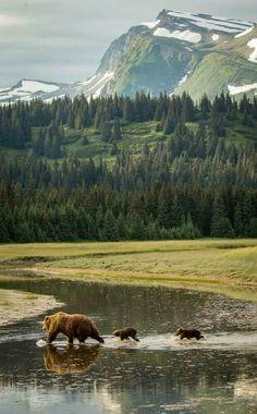 Lake Clark National Park and Preserve is a United States National Park in Port Alsworth, Alaska.
