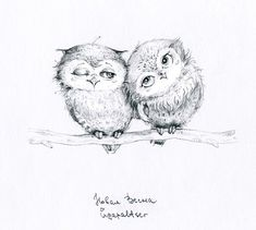 two cute owls by Инга Пальцер (Inga Paltser)
