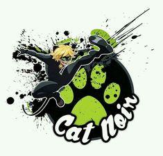 Chat noirrrr