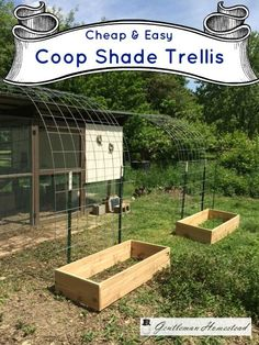 Building A DIY Chicken Coop If you've never had a flock of chickens and are considering it, then you might actually enjoy the process. It can be a lot of fun to raise chickens but good planning ahead of building your chicken coop w Easy Chicken Coop, Portable Chicken Coop, Chicken Garden, Chicken Coop Plans, Building A Chicken Coop, Chicken Runs, Chicken Chick, A Frame Chicken Coop, Farm Chicken