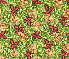 fabric, upholstery, patterns, quilting fabric, wallpaper, wrapping paper - Scattered Coleus Plants Green Yellow Pink fabric by wickedrefined on Spoonflower