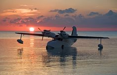Antilles Seaplanes Photo Gallery: See the Goose fly and land in the water island adventure Sea Plane, Float Plane, Civil Aviation, Aviation Art, Aviation Center, Amphibious Aircraft, Passenger Aircraft, Ww2 Aircraft, Old Planes
