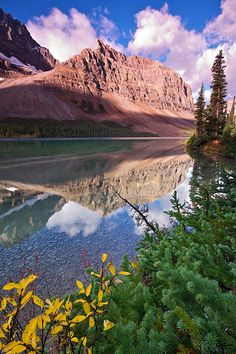 Bow Lake | Flickr - Photo Sharing!