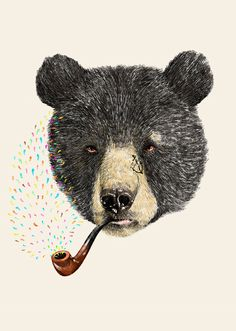 I like this illustration design a lot. The bear looks real but not to real, it still has a sense of illustration and fun to it. It makes me smile.