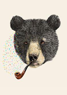 Smoking bear art smoking smoke artistic bear colors illustration creative art illustration art illustration images art illustration photos art illustration designs art design