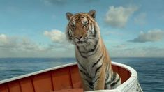 An inside look at the challenge of placing a 300 pound tiger and a boy on a life boat. Life of Pi - from director Ang Lee, based on the best-selling novel by. Life Of Pi Analysis, Life Of Pi Quotes, Life Of Pi 2012, Save The Tiger, Ang Lee, The Best Films, Bengal Tiger, Bengal Cats, Photos