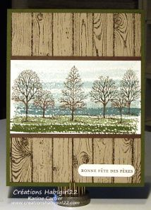 handmade card ... hardwood stamped background ... Lovely as a Tree trees overstamp on watercolor brush strokes ... luv the outdoorsy look! ... Stampin'Up!