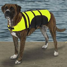 "$21.49-$37.49 Size Large measures 20"" along the dog's back. To fit the vest measure the length of pet's back from the base of the neck to the base of the tail. The vest length should not exceed the length of  the back. Guardian Gear Aquatic Pet Preservers are high quality dog life jackets that are great for keeping pets safe in and around the water. Each pet preserver is made with two layers of f ..."