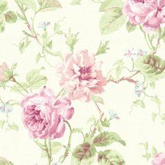 Pink Cottage Roses Wallpaper