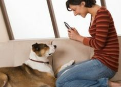 5 best apps for pet owners