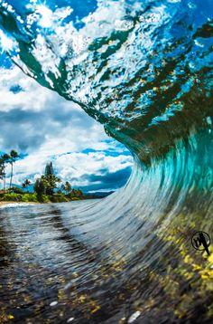 Wave - Marco Mitre