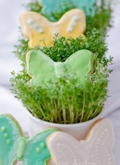 Cookie with a hint of citrus Avocado Toast, Herbs, Yummy Food, Sweets, Breakfast, Ethnic Recipes, Cookie, Morning Coffee, Biscuit