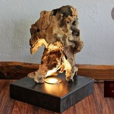 Driftwood Furniture, Driftwood Lamp, Driftwood Projects, Driftwood Sculpture, Modern Lighting Design, Rustic Lamps, Seashell Art, Wooden Lamp, Lamp Design