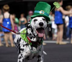 If it's a St. Paddy's weekend thing in the Roanoke Valley, it's listed here --   http://www.roanoke.com/living/1771035-12/st-patricks-day-2013-celebration-guide.html