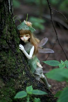 Always leave room in your garden for the fairies to play.