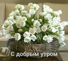 White Tulips in a basket FROM: How to create and decorate a spring floral arrangement. Part 2 Easter Flower Arrangements, Easter Flowers, Love Flowers, Fresh Flowers, Spring Flowers, Floral Arrangements, Beautiful Flowers, Exotic Flowers, Small Flowers