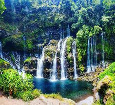 Amazing 80m high Waterfall à must to see at La réunion !   #waterfall #nature #langevin #amazing #beautiful #beautyofnature #reunionisland #summertime #974 #paradise #travel #instatravel #mytravelgram #instapassport #lareunion #gotoreunion #island #amazing #beautiful #lareunion #gotoreunion #island #travelgirl #travel #reunionisland #iledelareunion #team974 #weare974 #lareunionlela #vanillaislands #reunionparadis #team974 #974island #bestoftheday by ornellajoy