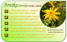 Natural Health, Diabetes, Life Is Good, Detox, Herbs, Nature, Plants, Fit, Style