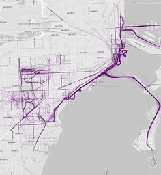 Miami, Florida | 21 Maps That Show How People Run In Different Cities
