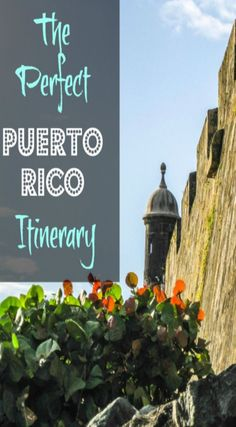 The Perfect Puerto Rico Itinerary Planning a vacation should never be taken lightly, as there are loads of destinations to choose from in your pursuit of the perfect place for rest and relaxation. Not only does it have beautiful tropical weather, but the