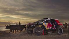 Der Fan-Guide zur Rallye Dakar 2015