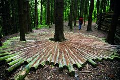 Land art ai Corni di Canzo (Maria Cristina Brambilla)