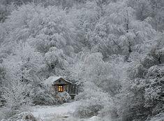 petites maisons solitaires / refuge