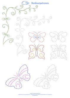 vines & butterflies