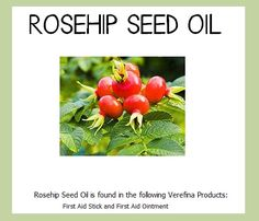 Our rosehip seed oil contains high amounts of vitamin E, vitamin A, and essential fatty acids which promote collagen and elastin levels to assist with cell regeneration. Rosehip seed oil promotes healthy skin and can be used on burns, sunburns, wrinkles, stretch marks and eczema. Research has shown that daily applications of rose hip oil helped with reducing the appearance of wrinkles and fading sun damaged areas of the skin.