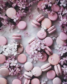 Macarons and Cherry Blossoms