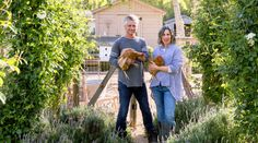 Who hasn't dreamed of leaving the city behind for pastoral fields and life in the country? Which is why, in 2010, when almost five acres of former dairy pasture appeared on the market in Ojai, California, Steve and Brooke Giannetti quickly snapped it up. Sure, their home in Santa Monica had chickens and vegetables in the front, but there just wasn't enough square footage for what they really wanted—a sprawling landscape with a greenhouse, a pond, and some hoofed additions to the family.