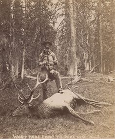 Old Timer Elk Hunt.