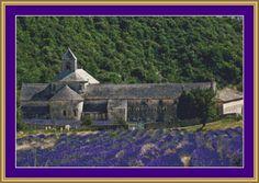 Lavender Field Cross Stitch Pattern