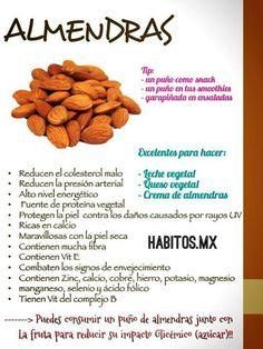 Propiedades de las Almendras #alimentos #vidasana #comerbien #salud #almendras