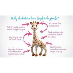 Why babies love Sophie the Giraffe | Little Greenie