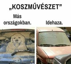 üdvözöllek Magyarországon🇭🇺 Funny Fails, Funny Jokes, Funny Images, Funny Pictures, Bad Memes, Pranks, Funny Moments, Funny Animals, Haha