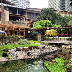 Greenbelt Park in Makati City, Makati City - My hood! Oh how I missed you!
