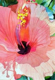 Blush Hibiscus, painting by Kay Smith