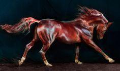 Jill Greenberg: caballos en alta definición.