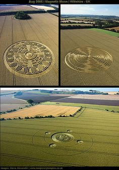 Crop Circles - Early August 2005 - Wiltshire, England - Images by Steve Alexander.