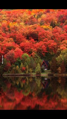 A little view from my beautiful homeland -Canada (Quebec)