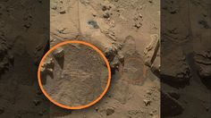 """Incredible Mars fossil find ...NASA officials have named the fish-like fossil, """"The Roman Red Fish,"""" after Mars, the Roman god of war and the planet's nickname """"Red Planet."""""""