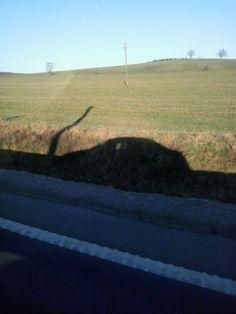 My car shadow