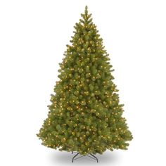 Pre-Lit Artificial Christmas Tree | Douglas Fir Wide Memory-Shape Pre-Lit Artificial Christmas Tree - American Sale