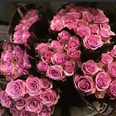 #roses #gorgeous #flowers