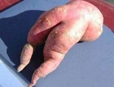 Sweet potato, oh my gosh this is so funny