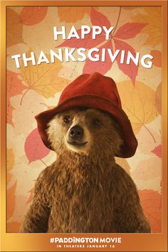 Happy Thanksgiving, everyone! How are you spending the holiday? | Paddington